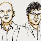 Chemienobelpreis: Warum werden organische Katalysatoren ausgezeichnet?
