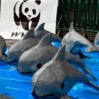Non-Fungible Animals: Naturschutzorganisation WWF verkauft NFT-Kunst