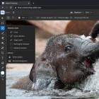 Adobe Max 2021: Mehr KI-Funktionen in Photoshop und Premiere Pro