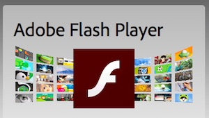 Adobe Flash-Player (Screenshot: Golem.de), Adobe Flash