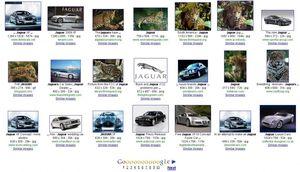 Google-Bilder suche: Ist der Jaguar eine Katze oder ein Auto? (Bild: Google), Bilderkennung