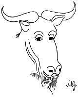 GPL - GNU General Public License