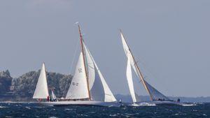 Segelboote in einer Regatta (Bild: Werner Pluta/Golem.de), Segeln